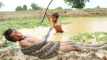 农村俩男孩水塘里游泳, 突然岸边窜出一条大蟒蛇, 结果悲剧了