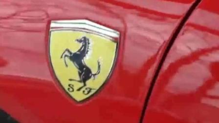 路边发现了一辆车, 车标是个奔马标志, 这是什么车啊