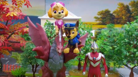 汪汪队立大功玩具视频 第一季 大惊小怪的天天 汪汪队立大功小猪佩奇奥特曼 大惊小怪的天天