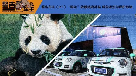 警告车主(27)盼达和熊猫一样都是国家保护动物-正常版本-车市进言