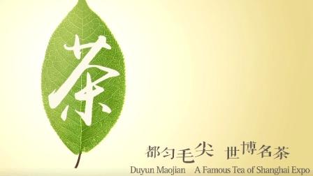 【城市专题片】都匀毛尖   世博名茶