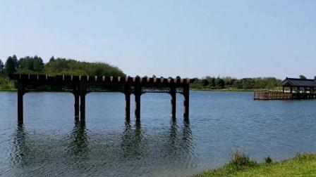 清远旅游好去处, 老马为大家介绍一下清远飞来湖湿地公园。