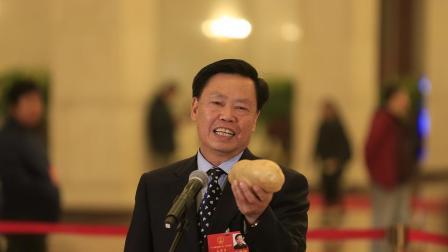 """科技在扶贫中有何作用? """"农民院士""""朱有勇拿着土豆现场讲解"""