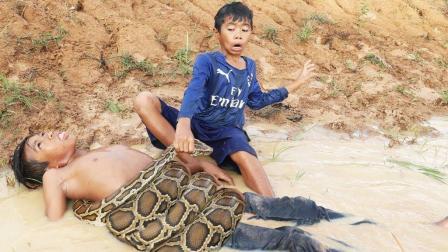三兄弟在荒郊野外摸鱼, 突然脚下踩到一条大蟒蛇, 太可怕了