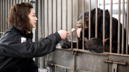 她养了86只熊, 一起生活了9年, 看完想哭了……