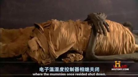 人类消失后博物馆里的埃及木乃伊能保存多久?