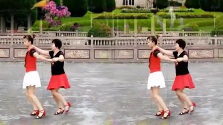 经典双人交谊舞广场舞14步 公园版本不学后悔