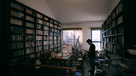 了解中国美术史, 如何从画工成为有修养的君子 艺视中国 刘墨