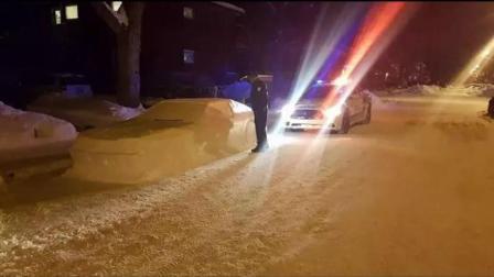 """男子在路边用雪堆出""""假汽车"""", 结果引来真警察!"""