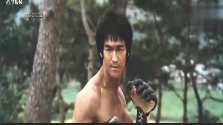 李小龙电影中的香港七小福, 李小龙对比成龙元彪元华洪金宝