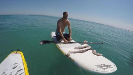 皮划艇抓到一个比人还大的鱿鱼, 不怕翻船吗?