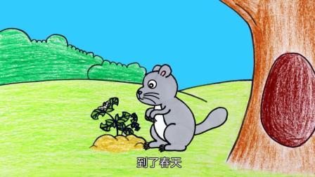 创意简笔画教学, 小龙猫的故事