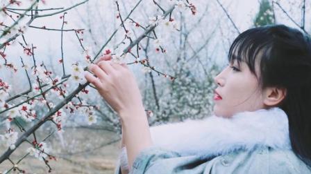 李子柒古香古食 第一季 第37集 春暖花开 来一碗梅花鸽子汤补补元气