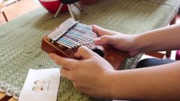 【卡林巴计划】名曲《踏雪寻梅》指弹独奏演奏, Sole桃花心木雕刻款实木kalimba拇指钢琴