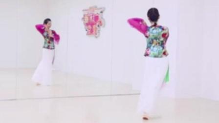 广场舞《梨花漫天开》形体舞太美了!