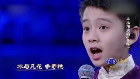 《经典咏流传》王鸿翔献唱古诗《墨梅》只为传承民族文化!