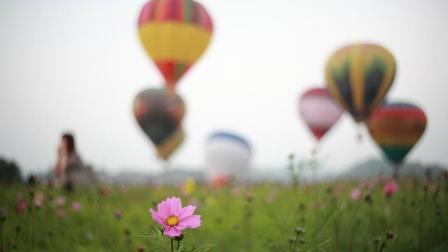 配眼镜时验光仪里面的农场、热气球图片有什么用途?