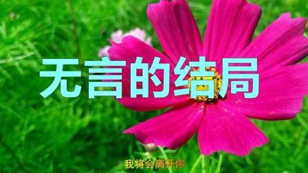 李茂山, 林淑容深情对唱《无言的结局》还是原唱好听, 百听不厌!