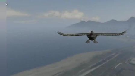 GTA5: 我是一只鸟, 只是空中拉了一坨屎, 这也被警察追?