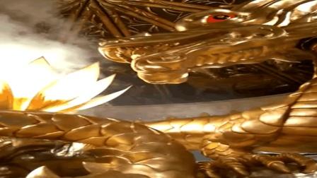 金光闪闪的仙人球里蹦出发光巨龙, 盛开美丽的荷花, 真让人陶醉呀