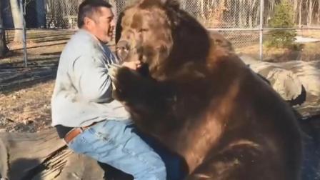 男子和熊一起玩耍拥抱, 熊: 得小心点别把骨头抱断了!