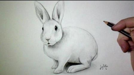既然最近是复活节, 那我们就来画只小白兔吧【绘画源于生活】28