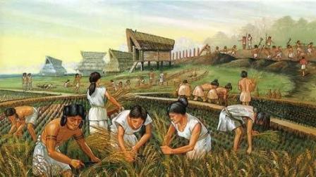姜小白说历史  第一季(2) 揭秘人类诞生以来的男女不平等: 食物, 女性到霍金