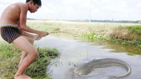 10岁男孩在农田水渠边钓鱼, 结果钓上来一条大鱼, 乐得哇哇叫!