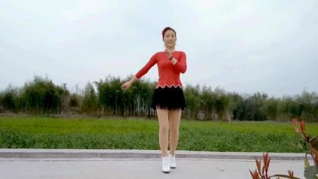 最新广场舞《舞女泪》馨蕊百合广场舞