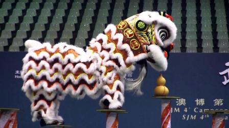 专业舞狮精彩表演, 台湾舞狮队
