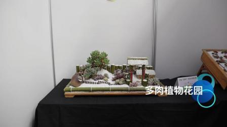 首届中国多浆(多肉)植物盆栽大赛金奖作品, 得了八千元奖金