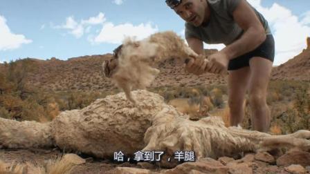 德哥自嘲自己真的是優秀的垃圾佬, 又撿到一只死羊還能利用一下!