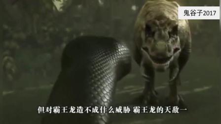 霸王龙唯一的天敌! 史前巨蟒根本不给霸王龙放在眼里!