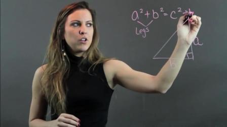 初中数学: 北大老师讲解勾股定理难度习题, 你学会了吗?