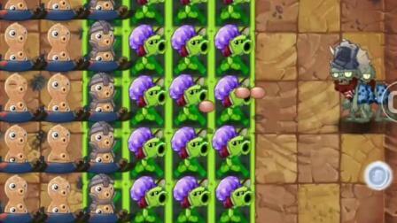 植物大战僵尸: 给花生豆配上个辅助, 小BOSS还能越过一步算我输!