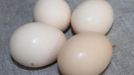 4个土鸡蛋, 不用加一滴水, 2分钟教你做一道水蒸蛋!