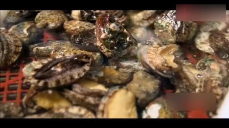 中国最大海鲜批发市场-黄沙海鲜市场, 这样挑龙虾、鲍鱼才专业