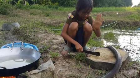 10斤的大蛇, 农村女孩把蛇头砍了放锅里煮, 不愧是村里长大的孩子