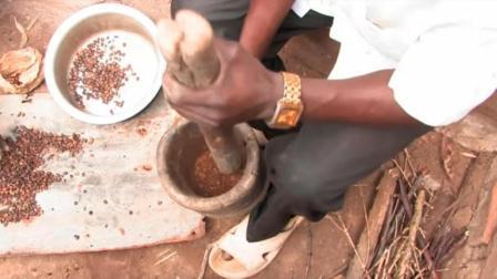 非洲小伙现摘咖啡果, 用铁锅炒咖啡豆, 煮好了请全村人一块喝