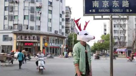 一鹿群跑上了南京路, 引发路人围观! 这组照片让人惊呆了……