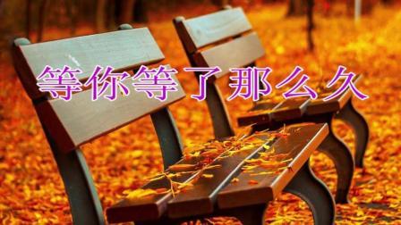 祁隆 / 乐凡合唱的这首歌很好听, 百听不厌愿该珍惜的要早早珍惜