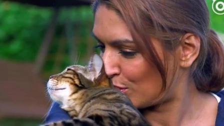 """为什么猫子一直对着人""""喵""""? 最后知道真相的我眼泪掉下来"""