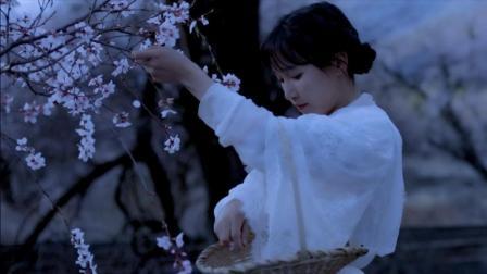 李子柒古香古食 第一季 第42集 张罗了些桃花味的小甜点 碾作汁熬成浆 依旧香的固执