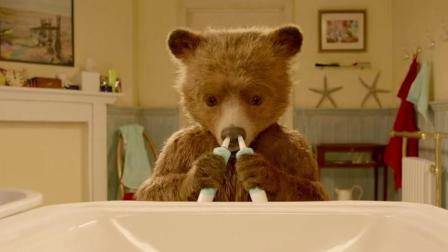 家有一熊, 如有一宝, 说的就是它!