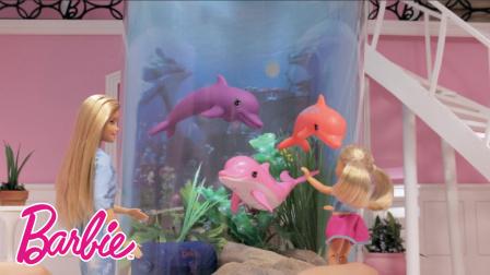 芭比梦想豪宅真人秀 海豚不好养
