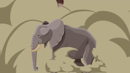 在河南, 为啥大象遍地跑?