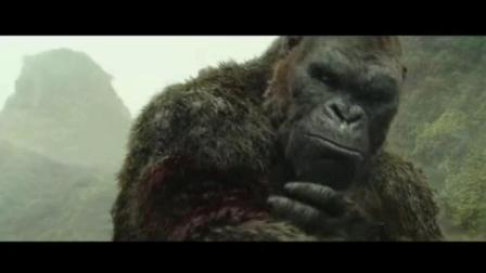 黑猩猩大战八爪鱼-电影骷髅岛剪辑