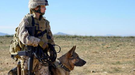 美国女大兵与军犬真实故事《战犬瑞克斯》预告加特辑