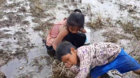 柬埔寨的熊孩子胆子真大, 把手钻进泥巴里去抓野味, 结果遇上这货!