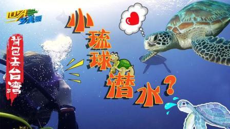 背包去台湾: 小琉球潜水, 与绿蠵(xi)龟共舞